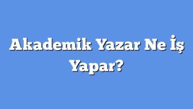 Photo of Akademik Yazar Ne İş Yapar?