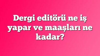Dergi editörü ne iş yapar ve maaşları ne kadar?