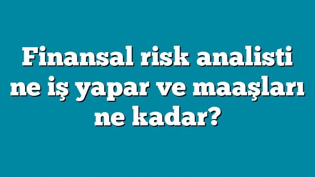 Finansal risk analisti ne iş yapar ve maaşları ne kadar?