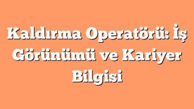 Photo of Kaldırma Operatörü: İş Görünümü ve Kariyer Bilgisi