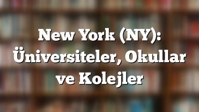 New York (NY): Üniversiteler, Okullar ve Kolejler