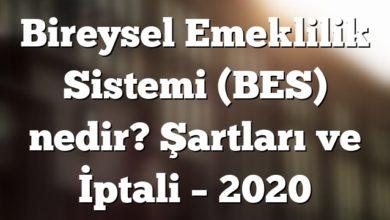Bireysel Emeklilik Sistemi (BES) nedir? Şartları ve İptali – 2020
