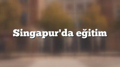Singapur'da eğitim