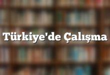Photo of Türkiye Çalışma Sistemi