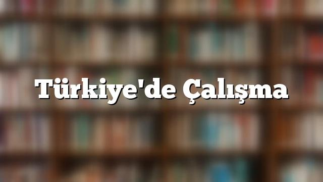 Türkiye'de Çalışma