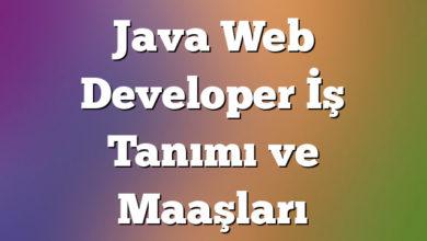 Java Web Developer İş Tanımı ve Maaşları