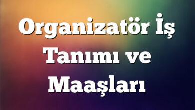 Organizatör İş Tanımı ve Maaşları